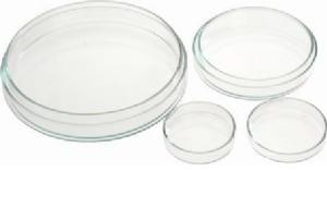 Petri kutusu